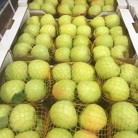 """תפוח עץ """"גולד דלישס"""" לא מדונג טרי מעץ ללא שאריות ריסוס"""